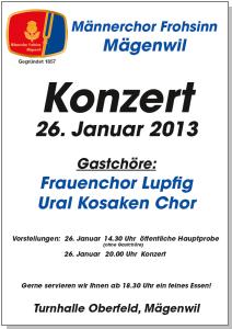 Konzert 2013 Plakat (PDF/1.7MB)